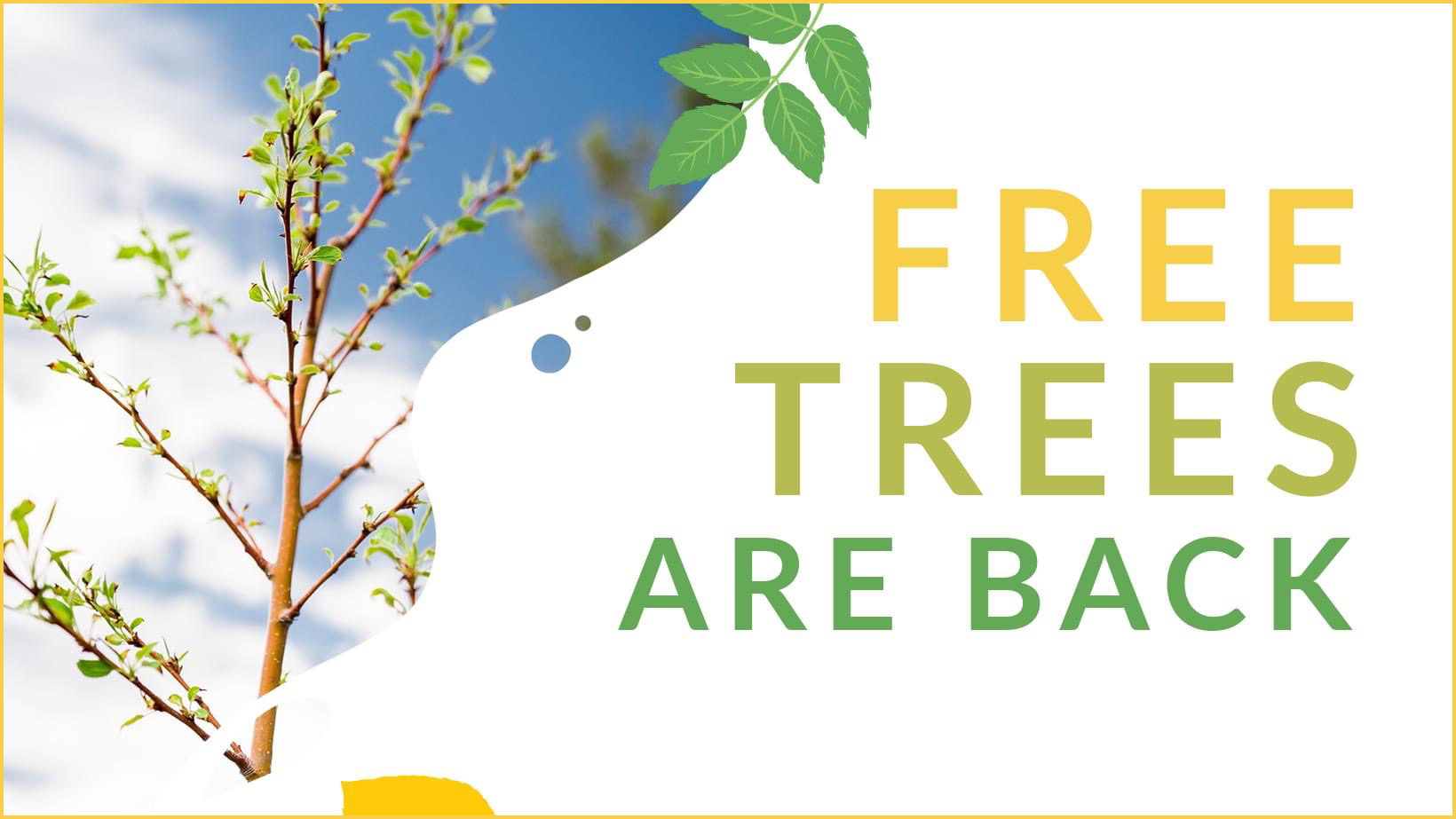 Free Trees are back